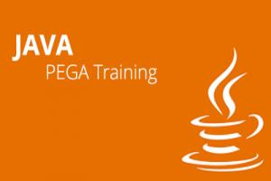 Best Pega  Training in Marathahalli, Bangalore