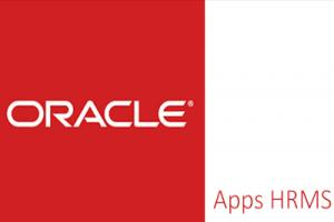 Best Oracle Apps HRMS Training in Marathahalli, Bangalore